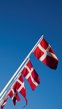 Danish flags (for 5.5 m flagpole)